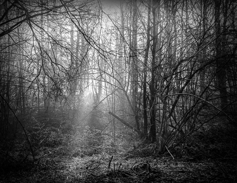 silence_68-2