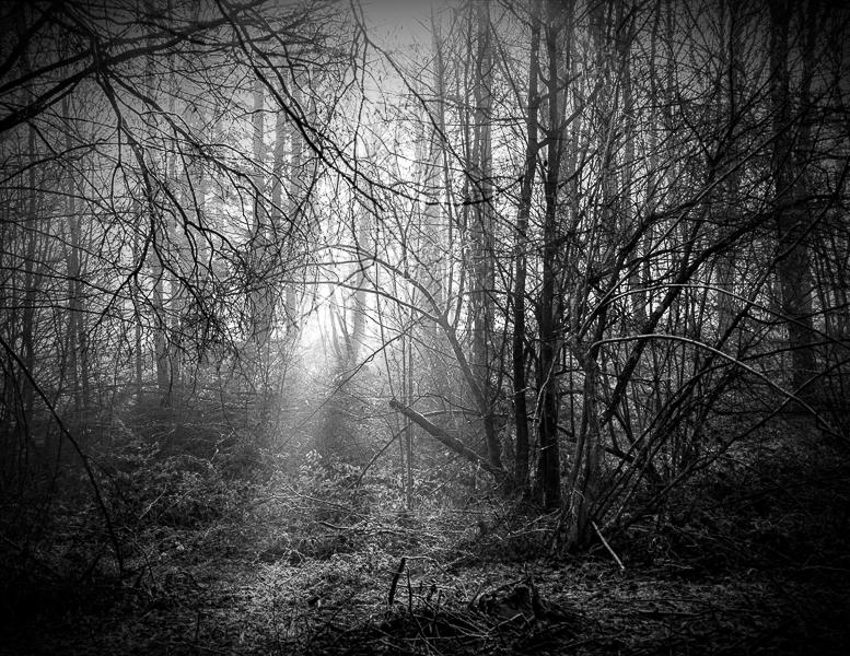 silence_68